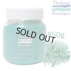 画像1: ブルターニュの塩の入浴剤 【アルグマリンソルト】 850g バスソルト タラソテラピー化粧品 タラソドブルターニュ